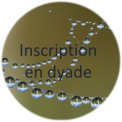 Introduction à la Pensée au Seuil d'Émergence (PSE) - inscription en dyade