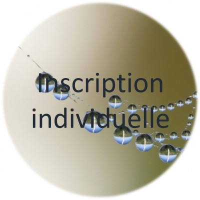 Introduction à la Pensée au Seuil d'Émergence (PSE) - inscription individuelle